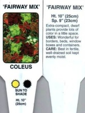 Coleus, Mixed