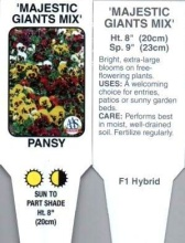 Pansy, Mixed